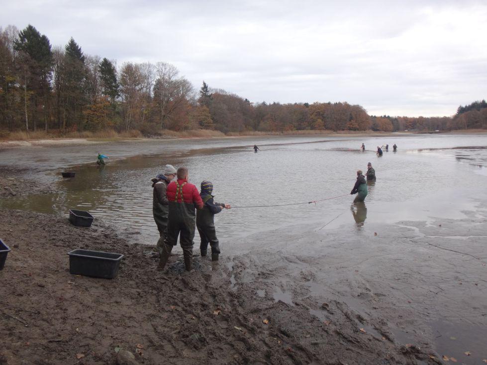 Am Ufer wurde kräftig mitgezogen.